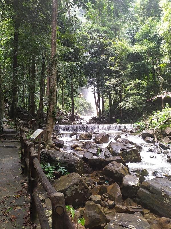Дорога к Темурун Лангкави