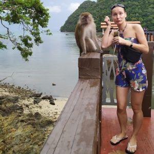 обезьяны Лангкави